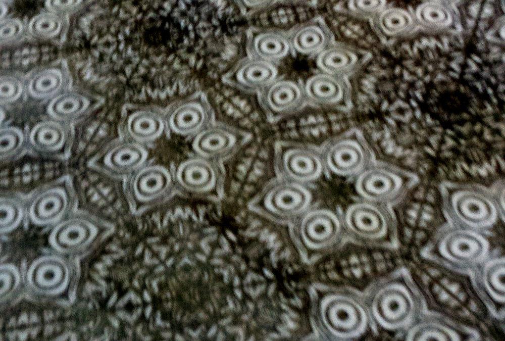 Detail Detail Detail